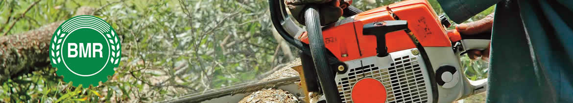 Lantra basic chainsaw maintenance & cross-cutting